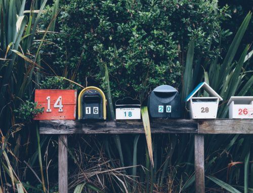 Engage Insurance Leads with a Powerful Newsletter